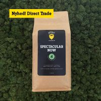 Spectacular Now (Formalet 1000g)